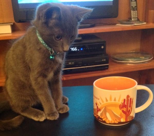 Saturday morning tea.