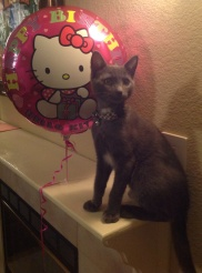 Lady of the House Birthday