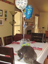 Man of the House Birthday